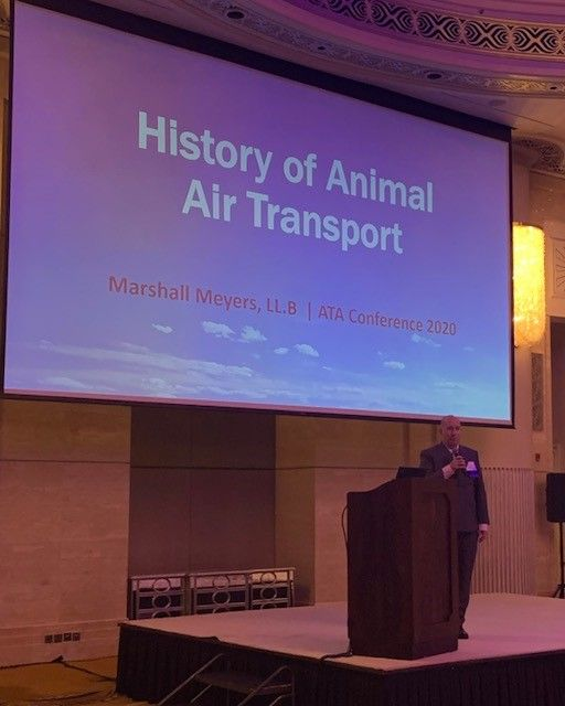 History of Animal Transport